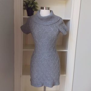 Banana Republic Extra Fine Merino Sweater Dress